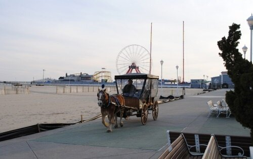 Horse & Carriage Rides Along the Boardwalk